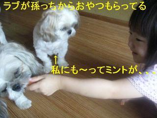 mint_20060916_1