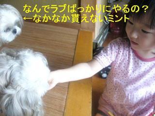 mint_20060916_4