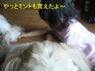 mint_20060916_5