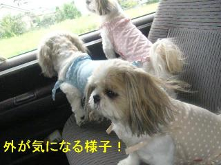 oyako_20060917_2