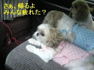 oyako_20060917_3