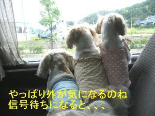 oyako_20060917_5