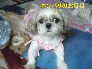mint_20061001_2