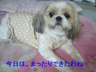 bibi_20060918_1