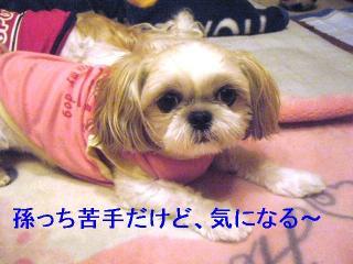 mint_20060919_2