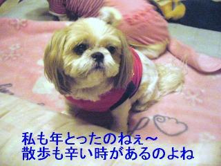 bibi_20061010_2