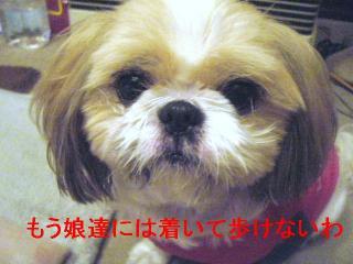 bibi_20061010_1