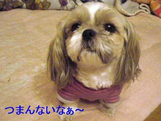 love_20060922_1