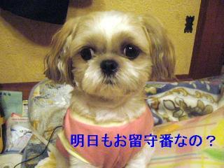 mint_20060922_1