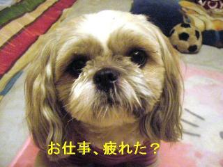 love_20060923_1