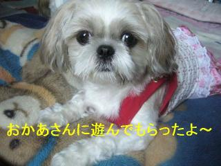 mint_20060924_2