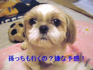 mint_20060926_2