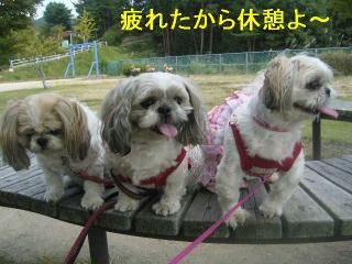 oyako_20060927_4