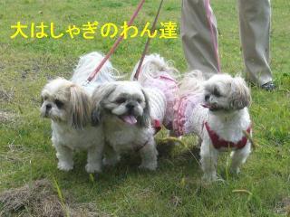 oyako_20060927_5