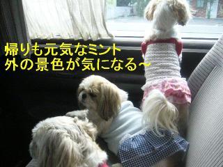 oyako_20060927_6