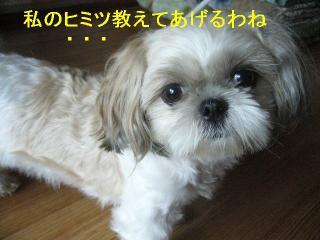 mint_20061001_1