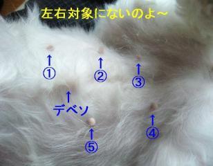 mint_20061001_4