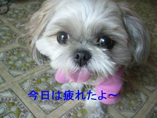 mint_20061007_2