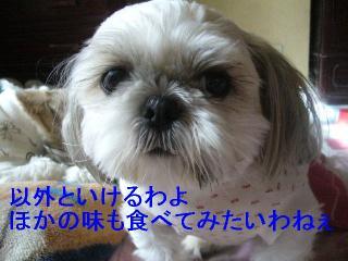 mint_20061010_11