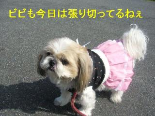 bibi_20061014_1