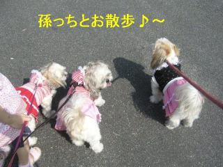 oyako_20061014_1