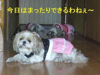 oyako_20061015_1