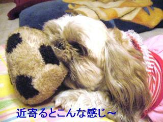 love_20061017_2