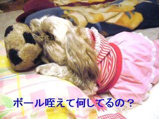 love_20061017_1