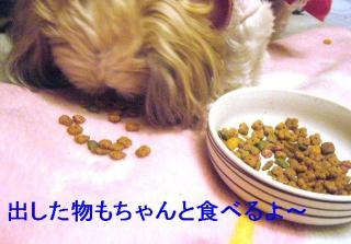 mint_20061018_2