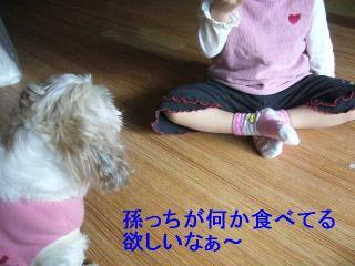 mint_20061022_1