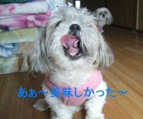 mint_20061022_3