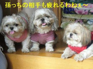oyako_20061022_1