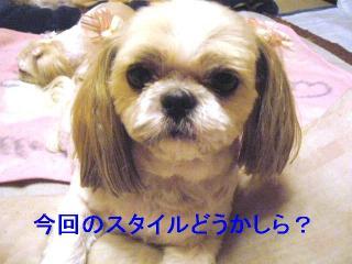 bibi_20061023_1