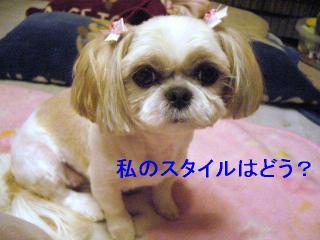 mint_20051023_1