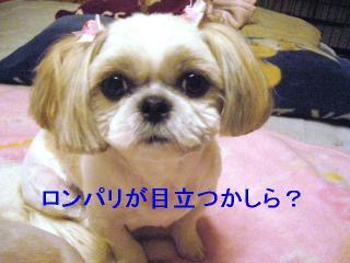 mint_20061023_2