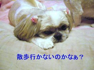 love_20061026_1