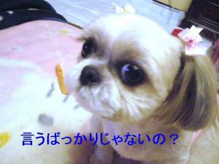 mint_20061026_1