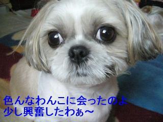 mint_20061028_2
