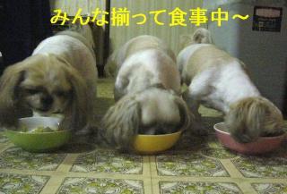 oyako_20061101_1