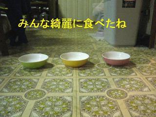 gohan_20061101_1
