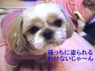 love_20061102_1