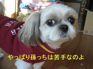mint_20061104_1