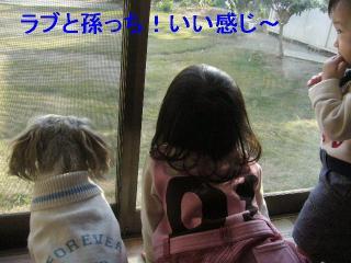 love_20061104_1