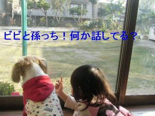 bibi_20061104_3