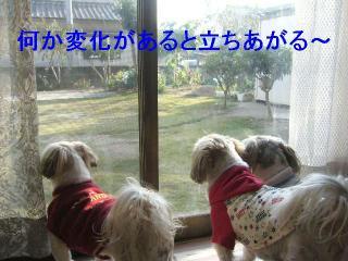 oyako_20061104_2