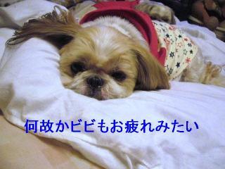 bibi_20061105_1