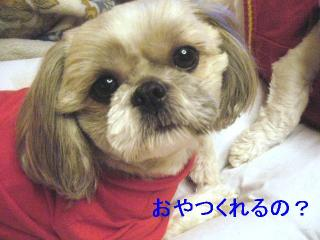 love_20061106_1