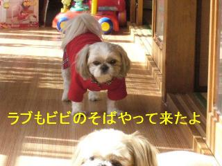 love_20061112_2