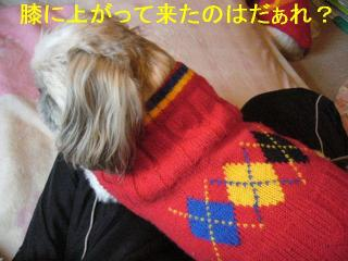 love_20061118_1