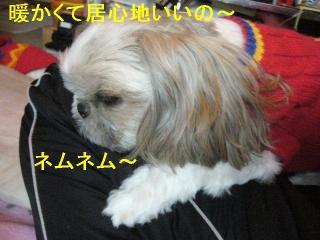 love_20061118_3
